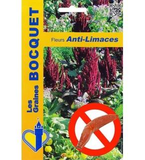 Mélange écologique de graines de fleurs Anti-Limaces