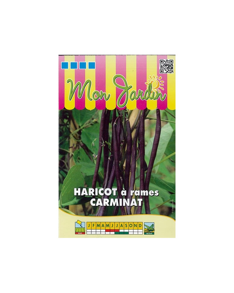 Haricot à rames Carminat - 70g