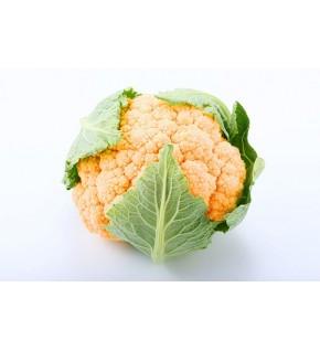 Chou fleur Sunset hybride F1(le sachet de 10 graines)