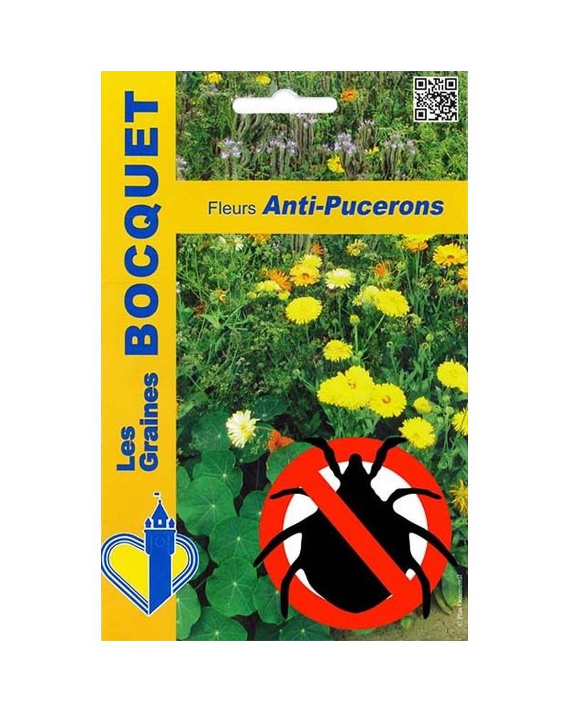 Mélange écologique de graines de fleurs Anti-Pucerons