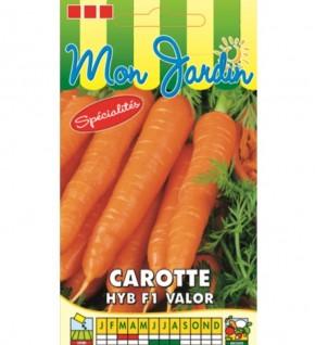 Carotte HYB F1 Valor type...