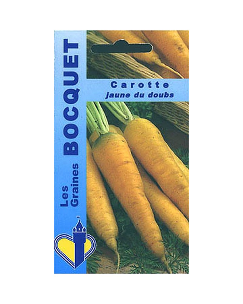 Carotte jaune obtuse du Doubs