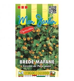 Brede Mafane - Cresson Para...