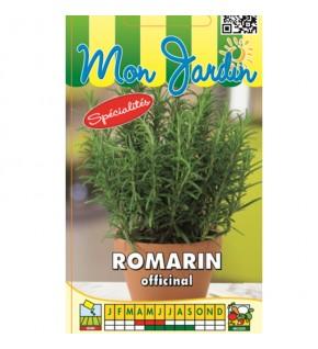 Romarin Officinal...