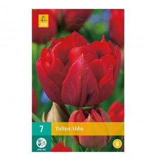 7 Tulipes à fleurs rouge...