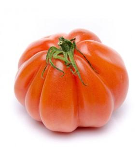 Tomate Beefsteak (chair de...