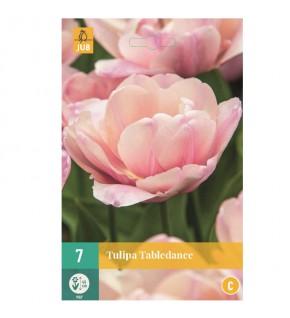 Tulipes doubles tardives...