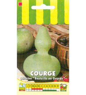 Courge décorative Pèlerine ( bouteille Pèlerine )
