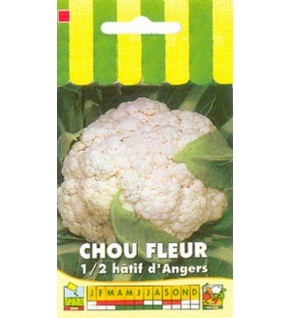 Chou fleur extra hâtif d'Angers