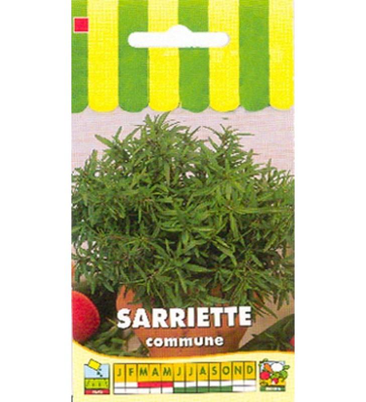 Sarriette commune