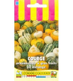 Courge ornementale à gros fruits en mélange