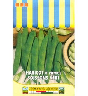 Haricot à rames Soissons vert 100g