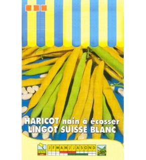 Haricot nain à écosser Lingot  Suisse blanc 150g