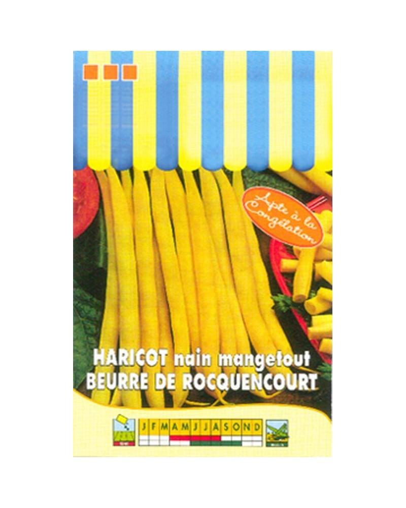 Haricot nain beurre de Rocquencourt - 110g