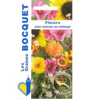 Fleurs pour oiseaux en mélange
