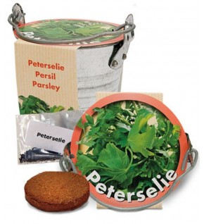Persil + pot zinc