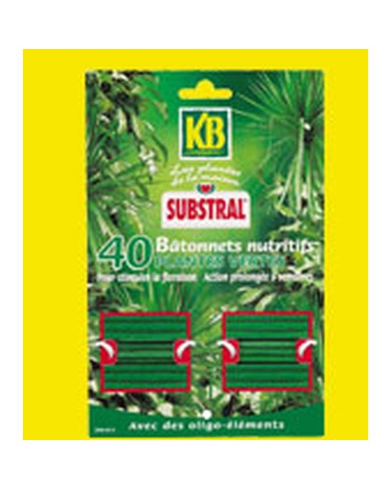 Engrais nutritifs plantes vertes. Lot de 40 bâtonnets