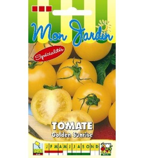 Tomate jaune Golden Sunrise