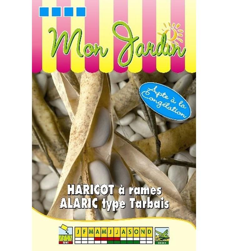 Haricot à rames Alaric 100g - type Tarbais