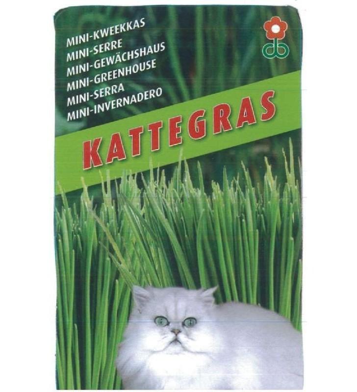 Mini serre de culture d'Herbe à chat