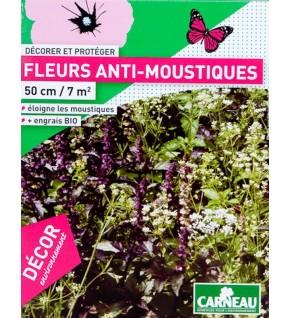 Fleurs anti-moustiques