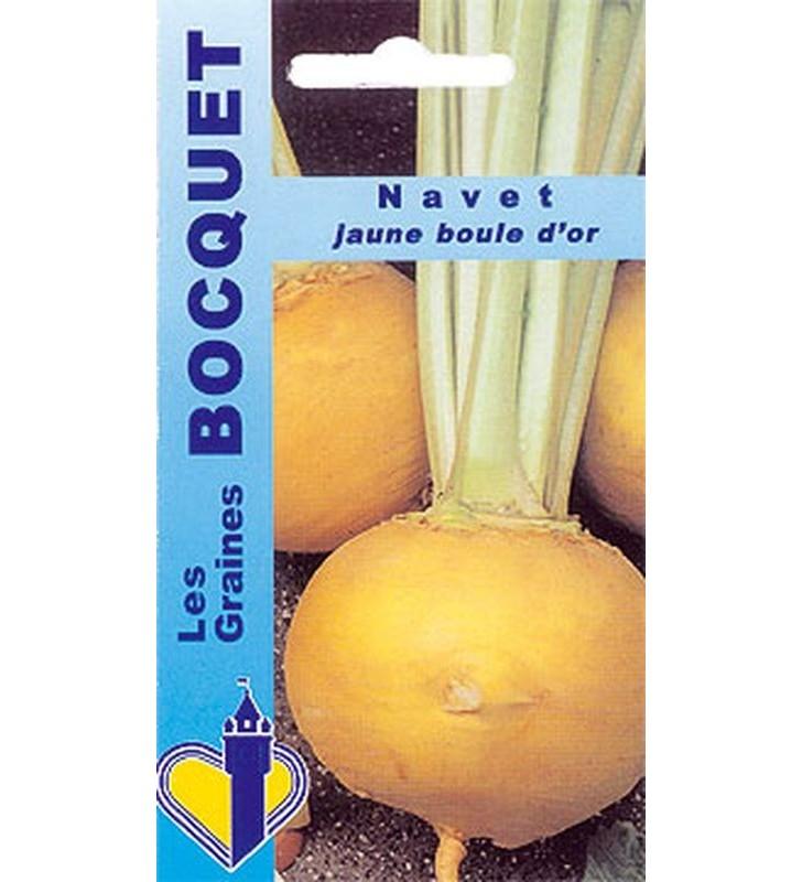 Navet jaune Boule d'or