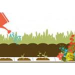 Tapis de semis, graines potagères/florales en ruban | Graines Bocquet