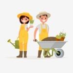 Des plantes pour jardiner facilement | Graines Bocquet