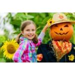 Tout pour jardiner avec ses enfants | Graines Bocquet