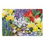 Bulbes de tulipes à planter en automne | Graines Bocquet